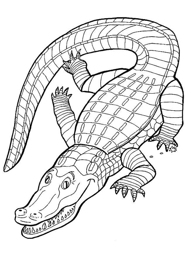 Crocodile Coloring in Pages 11