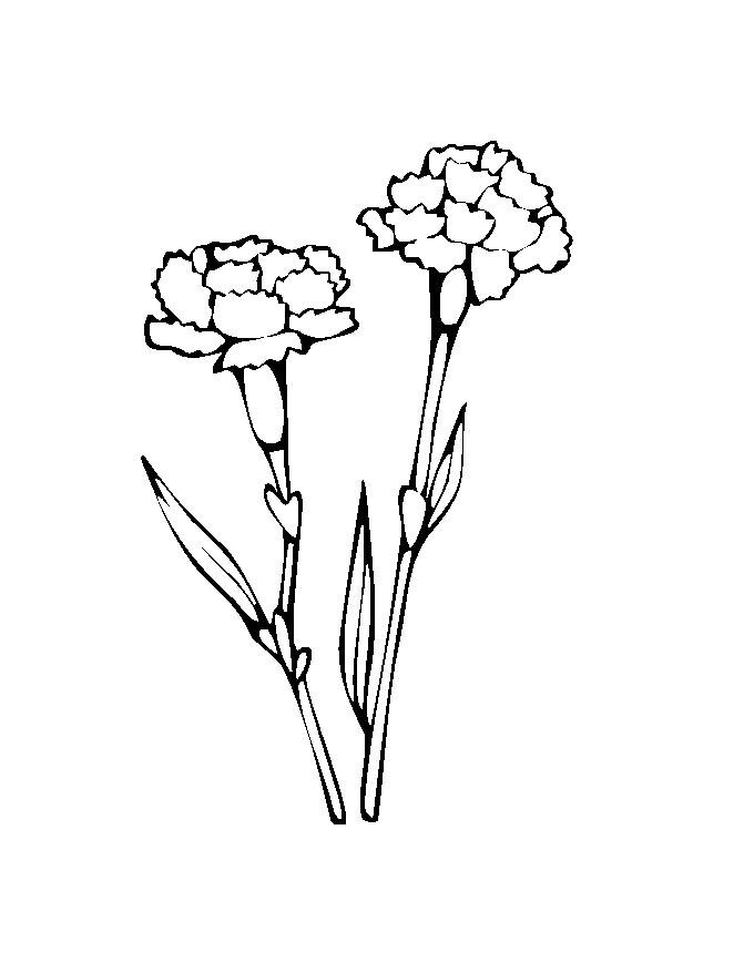 Flower Coloring in Pages 6