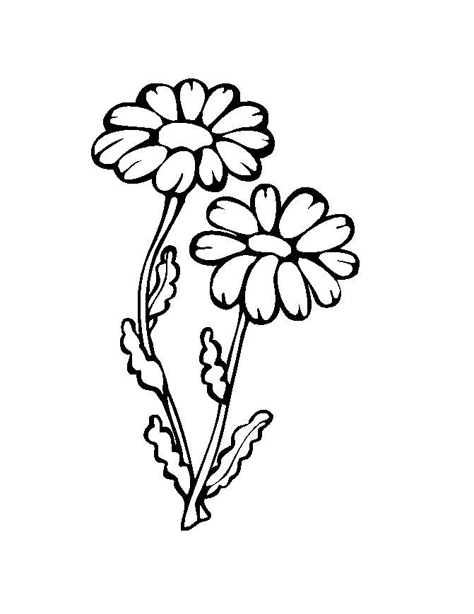 Flower Coloring in Pages 7